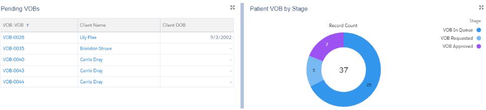 patient intake management process in salesforce